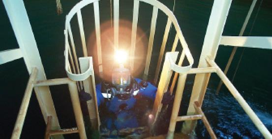 001 Diver in cage_fmt1